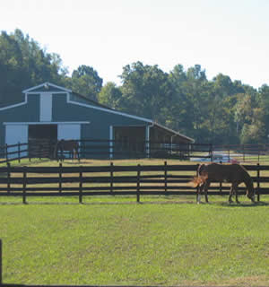 Encore Sporthorse At Ovation Farm Facilities Page